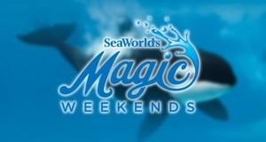 seaworld_magic_weekends01