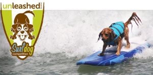 Unleashed-By-Petco-Surf-Dog-Competition